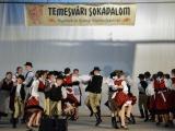 temesvari-sokadalom-2019__004