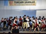 temesvari-sokadalom-2019__005