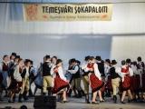 temesvari-sokadalom-2019__008