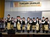 temesvari-sokadalom-2019__033