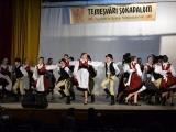 temesvari-sokadalom-2019__062