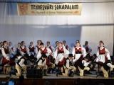 temesvari-sokadalom-2019__063