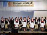 temesvari-sokadalom-2019__065