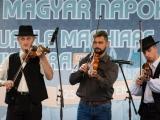 v-temesvari-magyar-napok__014