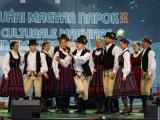 v-temesvari-magyar-napok__059