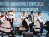 v-temesvari-magyar-napok__109